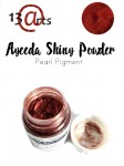Ayeeda Shiny Powder Wine Red Satin