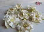 White curly flowers  25pcs