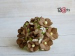 Mini sweet flowers 10 pcs brown 2 colors