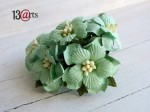 Sweet flowers mint 5 pcs (1)