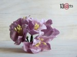 Lily flowers 5 pc - light purple
