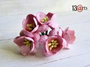 Cherry blossoms pink 5 pc