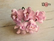 Cherry blossoms light pink 5 pc