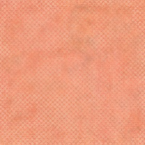 ADD-ON Paper Color Basic Salmon Pink